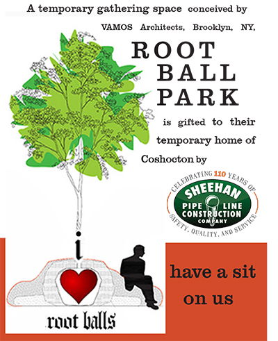root ball sign