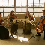 Momenta-Quartet-2013_web